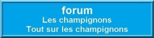 forum-1-300x75 dans Accueil